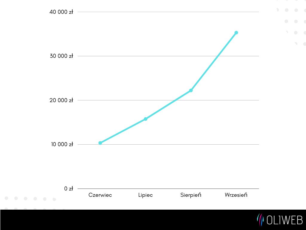 Wykres sprzedaży sklepu internetowego